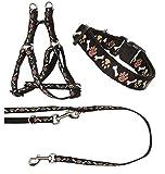 Ein Set - Halsband, Hundegeschirr Step-In, Hundeleine - verstellbar, Zugentlastung, stabil, bequem, weich, Farbe Schwarz - TX-ZOO/Za-BLACK