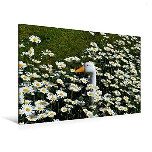 Premium Textil-Leinwand 120 cm x 80 cm quer, Der Vergleich | Wandbild, Bild auf Keilrahmen, Fertigbild auf echter Leinwand, Leinwanddruck (CALVENDO Glaube)