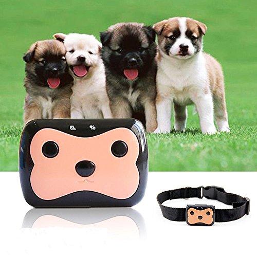 tkstar Mini Wasserdicht GPS Tracker für Haustier Hund Katze Global Echtzeit Locator Fernbedienung Stimme Monitor kostenlosen Online-Tracking Plattform