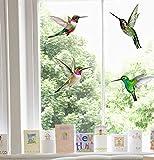 Stickers4 Vogel-Fensteraufkleber zum Schutz gegen Vogelschlag - vier schöne...