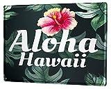 Blechschild Abenteurer Hawaii Aloha