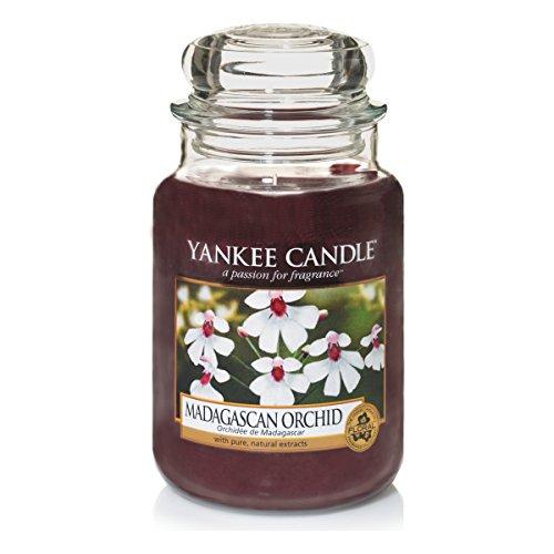 Yankee Candle, Candela profumata in barattolo di vetro, Madagascan Orchid, Grande