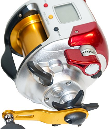 ShimanoDendou- Maru 4000 Plays Elektrorolle Multirolle