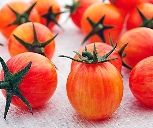 Bobby-Seeds Tomatensamen Cherrytomate Artisan Golden Bumble Bee Portion - Cherry-tomaten Orange