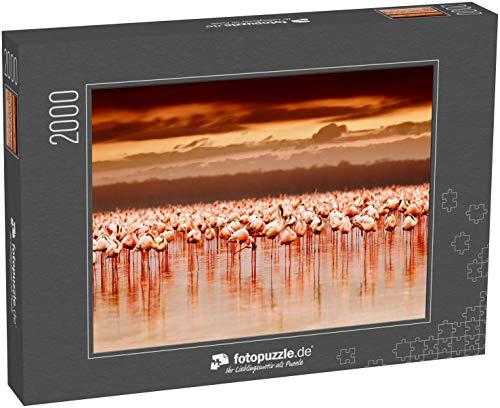 Puzzle 2000 Teile Afrikanische Flamingos im See bei schönem Sonnenuntergang - Klassische Puzzle, 1000 / 200 / 2000 Teile, edle Motiv-Schachtel, Fotopuzzle-Kollektion \'Tiere 2\'