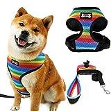 FOONEE Hundegeschirr No-Pull, Haustiergeschirr Verstellbare Outdoor-Haustierweste mit Leine und Müllsäcken, Regenbogen-Nylon-Materialweste für Hunde Einfache Kontrolle für kleine mittelgroße Hunde