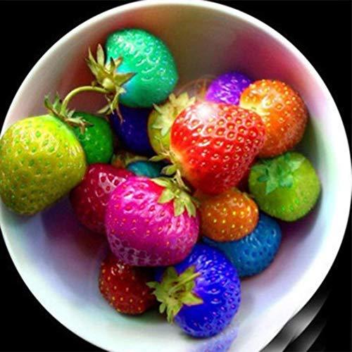 Potseed 50 / 100pcs Farbige Erdbeeresamen Fragaria Fruchtsamen für Gartenpflanzen -