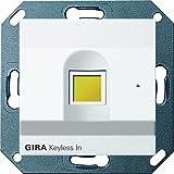 Gira 260703 Keyless In Fingerprint System 55, reinweiß