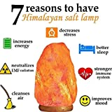 Organiac Natural Shape Himalayan Rock Salt Lamp, 3-4 kg with Bulb and Electric