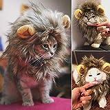 UWLion Mane para Gato, Lindo Disfraz de Mascota Peluca de león con Orejas para Gato y pequeño Perro