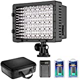Neewer CN-160 LED Dimmable Ultra High Power Panel Video Light Kit: CN-160 LED Light,(2)2200 mAh Battery, USB Battery Charger and Carrying Case for Canon, Nikon, Pentax, Sony DSLR Cameras,DV Camcorders