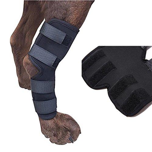 hunde gelenkschutz, AmaMary Hundehalsband mit extra unterstützender Hinterbeinbeinschutz schützt die Wunden (S) (Spitze Schiene Sprunggelenk)