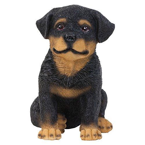 Rosco' Figurine Chiot Rottweiler Assis Réaliste en Résine 15cm