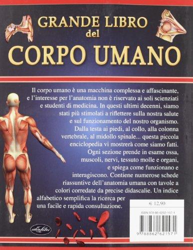 Zoom IMG-1 grande libro del corpo umano