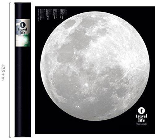 """Luna Nascosto """" I love you """" - Regalo Originale Fantastico per Ragazzo Ragazza Moglie Marito- Adesivi Murali Fluorescenti Camera da Letto Soggiorno molto Realistico, Fai da Te!"""