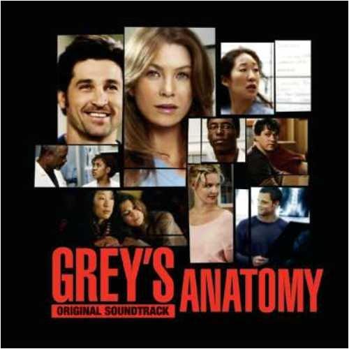 Grey's Anatomy Vol. 1