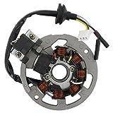 Xfight-Parts Ankerplatte mit Pick-up aussenliegend 5 Kabel 1x3 und 2x1 Pol. 2Takt 50 ccm liegender Minarelli Motor AC/LC 1E40QMB Leeb (Beeline) Memory 50
