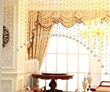 5 x 1M Türvorhang Kristall Girland Crystal Clear Acrylic Bead Garland Durchsichtig Hochzeit Partei Dekor DIY Dekor Anhänger Perlenvorhang ( Mit Kristall Kugel )