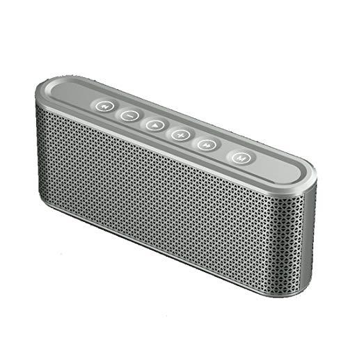 Leilei Bluetooth-Lautsprecher Tragbarer Bluetooth 4.2-Touch-Stereolautsprecher Dual-Driver 8-10h Spielzeit und eingebautes Mikrofon,Gray 2 Schallköpfe