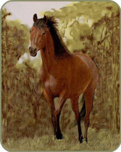 Schwere Gewicht Trabendes Pferd Decke Polyester Nerz Decke von Regal Komfort -