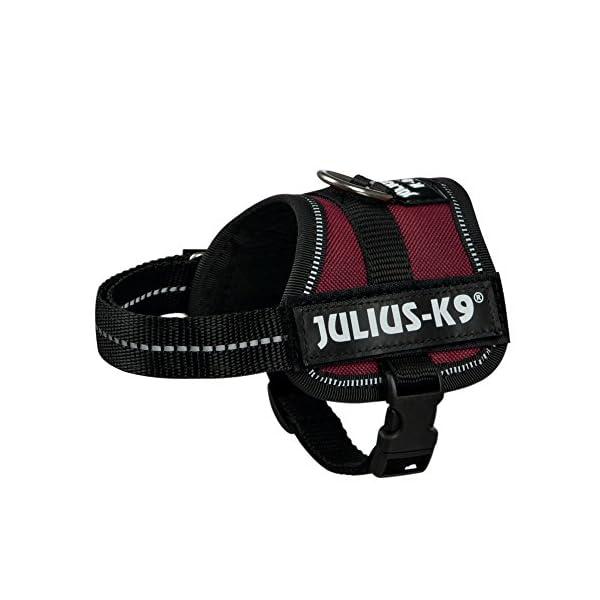 Julius-K9, Powerharness 8