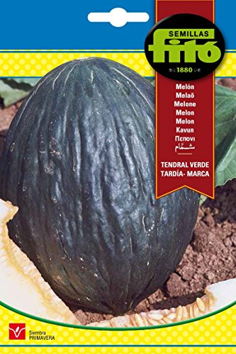 Semillas Fitó 219 - Semillas de Melón Tendral Verde Tardía Marca