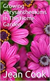 Growing Chrysanthemums In The Home Garden