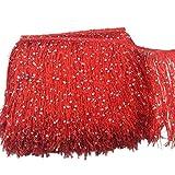 Yalulu 2 Meter 20 cm Polyester Pailletten Quaste Fransen Spitzenbesatz Band Nähen Latin Kleid Kleidungsstück Vorhang Zubehör (Rot)