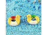 HSDDA Jardín de Hadas 1 pc Micro Paisaje Mini Resina Pato Forma natación Anillo Adornos para jardín decoración del hogar (Color Aleatorio) Adornos