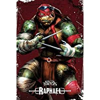 Póster grande de las Tortugas Ninja (con Rafael) 61x91,5cm PP33478