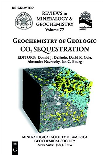 Geochemistry of Geologic CO2 Sequestration (Reviews in Mineralogy & Geochemistry, Band 77) (Treibhausgas)
