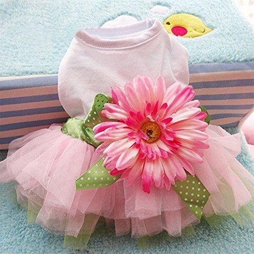 YooGer Daisy Flower Bow Tutu Kleid Spitzenrock, Katze Haustier Hund Prinzessin Kostüm Kleidung Hund Bekleidung-Größe XL