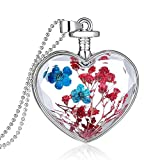 Feilok Klassik Herz-Form Blau und Rot Trockene Blumen Transparente Kristall Damen Länge Kette Anhänger Halskette…