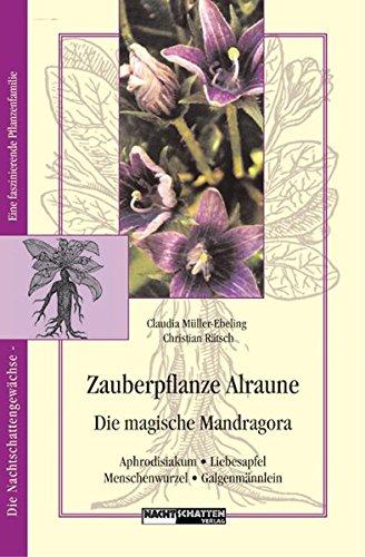 Zauberpflanze Alraune: Die Magische Mandragora: Aphrodisiakum - Liebesapfel - Galgenmännlein (Nachtschattengewächse - eine interessante Pflanzenfamilie)