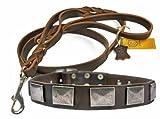 Dean & Tyler Vintage Leder Halsband mit Passenden Braidy Haarschmuck Strauß Leine für Haustiere, 26bis 76cm, braun