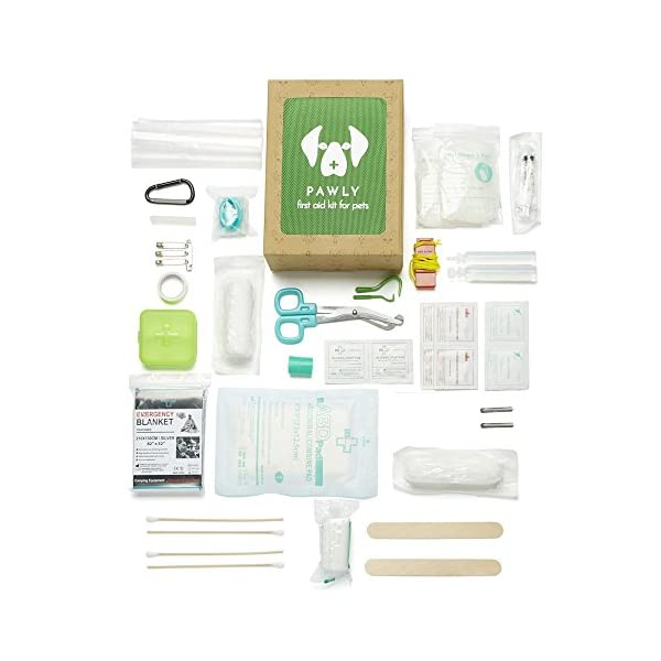 Pawly Pet First Aid Kit - Includes Over 40 Premium Items - Tick Remover, Syringe, Vet Wrap, Bandages, Wipes and Lancets 2