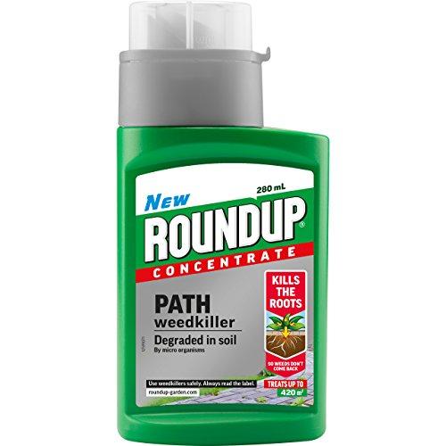 Roundup eacute;sherbant concentré pour allées et sentiers, flacon de 280ml