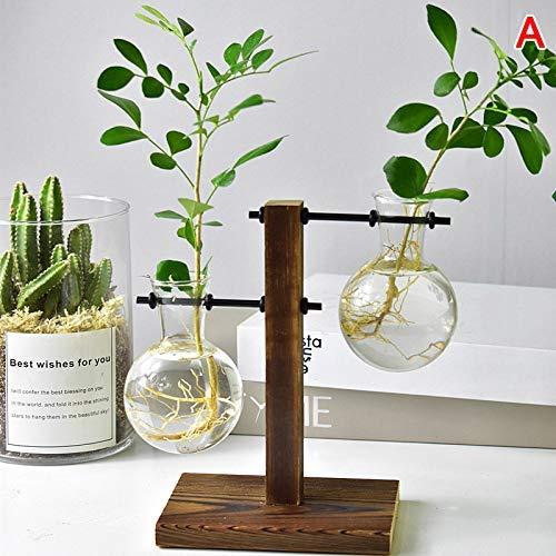 SuneWay Hidropónico Planta Floreros Vintage Macetero Transparente ...