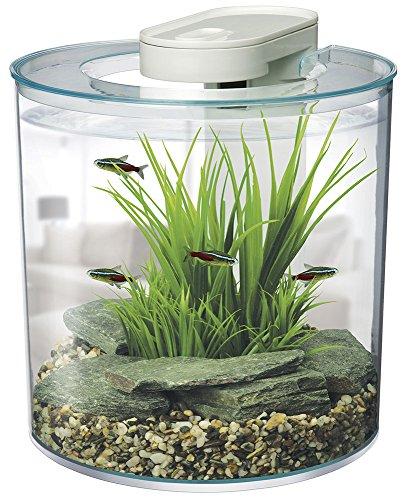 Amazon Uk: Tropical Fish Tanks: Amazon.co.uk