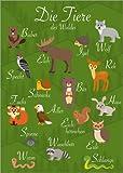 Poster 30 x 40 cm: Waldtiere von Kidz Collection/Editors Choice - Hochwertiger Kunstdruck, Kunstposter