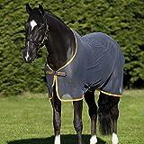 Amigo Net Cooler - Horse Equestrian Outdoor Moisture - Best Reviews Guide