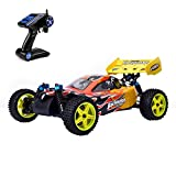 HSP Nitro Gas 1/10 Scale Off-Road Buggy 94166 , Getek 4wd Two Speed Hobby Rc Car