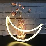 AIZESI Mond Moon Lampe,NeonLampen,Mond Festzelt Batterie oder USB betrieben Tisch LED Ligths WandDekoration für Mädchen Schlafzimmer,Wohnzimmer,Weihnachten,Party als Kinder Geschenk(Warm White Moon)