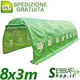Serra Tunnel 8x3m con 9 arcate in Acciaio orto Giardino Piante Telo PE antigrandine