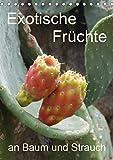 Exotische Früchte an Baum und Strauch (Tischkalender 2019 DIN A5 hoch): Tropisches Obst fotografiert wie es wächst an der Pflanze (Planer, 14 Seiten ) (CALVENDO Natur)