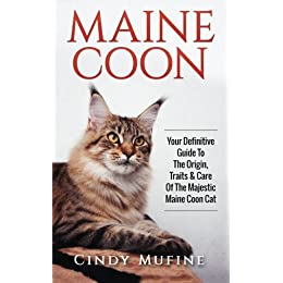 maine coon your definitive guide to the origin traits u0026 care of the majestic
