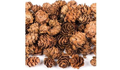 Petites pommes de pin naturelles décoratives Sachet de 250 g Code 895141