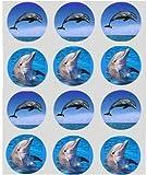 12 Delphin reispapier fee / becher kuchen 40mm cake topper vorschnitt deko