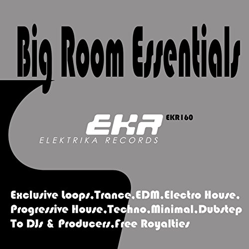 Big Room Essentials DJ Tools - Tool Room