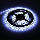 Kit de Ruban à LED, BLOOMWIN Ruban Lumineux A LED Flexible Autocollant de 5M avec Transformateur 2A - Blanc Froid